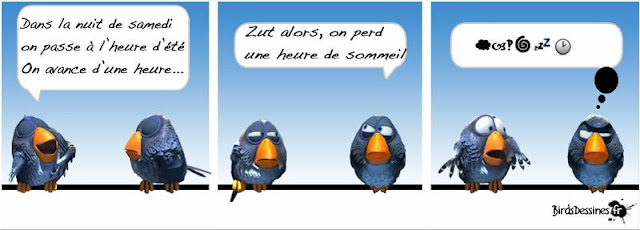 http://www.birdsdessines.fr/