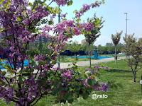 Parco Mennea
