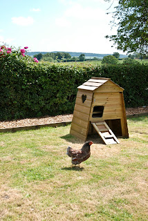 Flylte so Fancy Chicken Coops