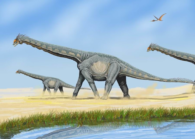 How dinosaur dung fertilised the world