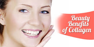 6 Benefits of Collagen