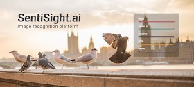 Neurotechnology Launches SentiSight.ai, a New Platform that Enables Users to Create AI-based Image Recognition Models Without Writing Any Code