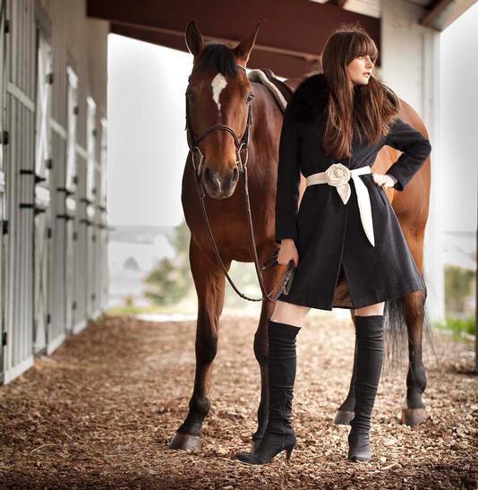 Equestrian Myth Vs Reality Horse Nation