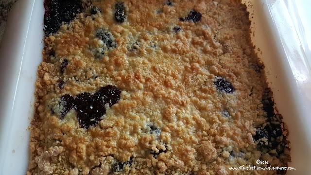 Mulberry Cobbler  www.hensleefarmadventures.com