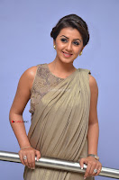 Nikki Galrani in Saree 027.JPG