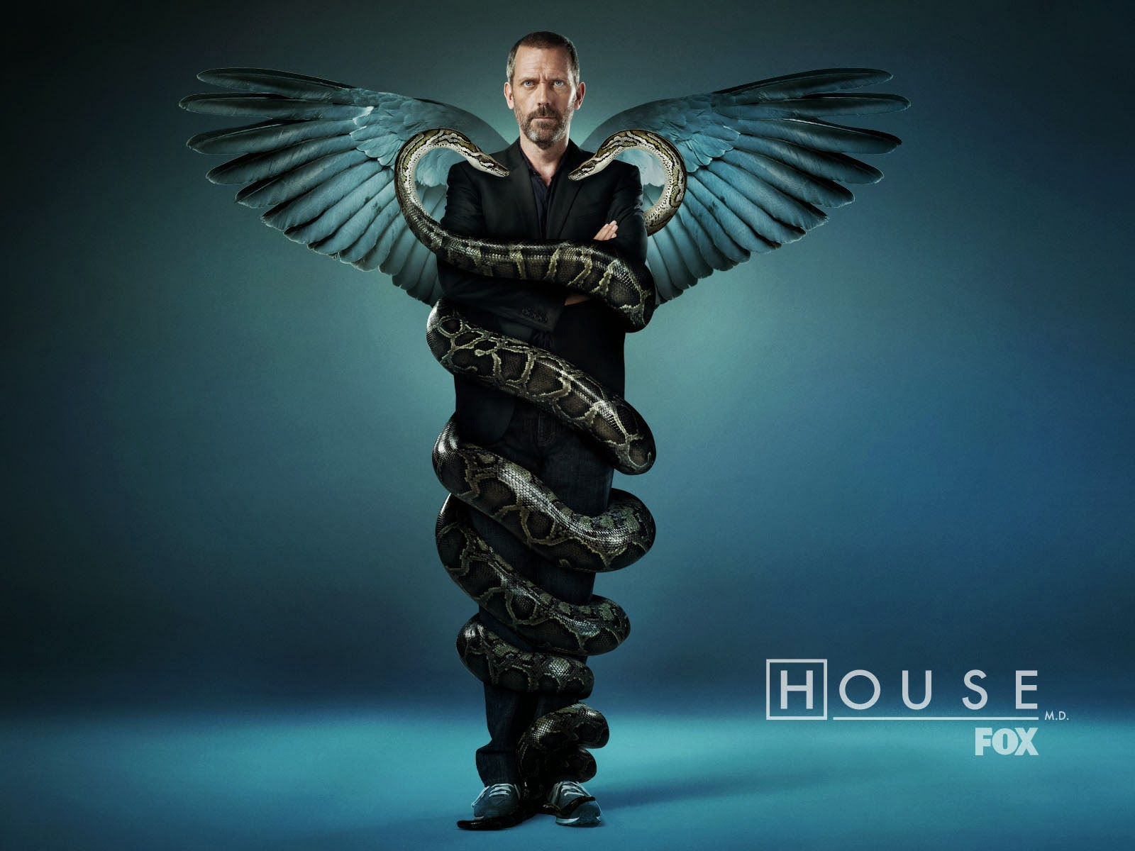 Iphone 6 Wallpaper Fall Wallpapers Hd 32 Wallpapers Hd De Doctor House Varias