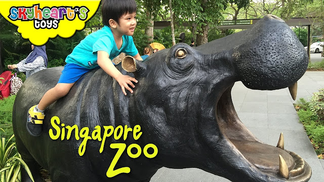 Safari Adventure in SINGAPORE ZOO , River Safari and SEA Aquarium | playtime toys for kids