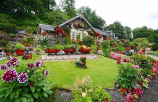 Beautiful Garden Furniture For The Nature Lover | Mesotheliomasandiego