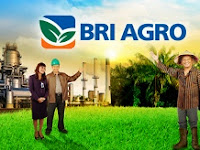 PT Bank Rakyat Indonesia Agroniaga Tbk - recruitment For Officer Development Program Mei - Juni 2014