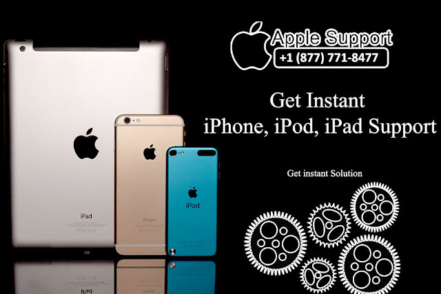 apple tech support phone number