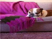http://susimiu.es/manta-crochet-ripple-blanket/