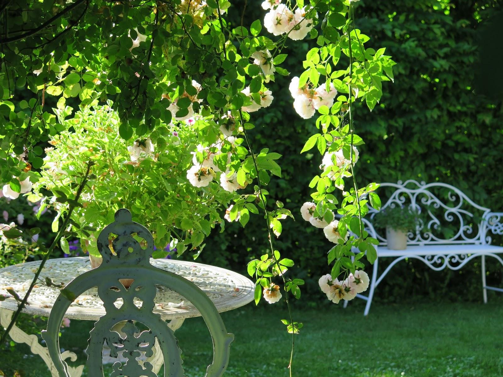 Gartenfaultier Gartenarbeit
