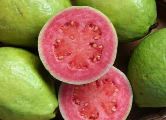 18 beneficii uimitoare de guava (Amrood) pentru sănătate, păr și piele