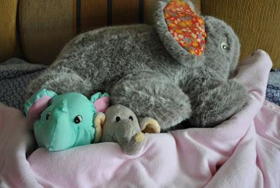 elefantii la ora de somn