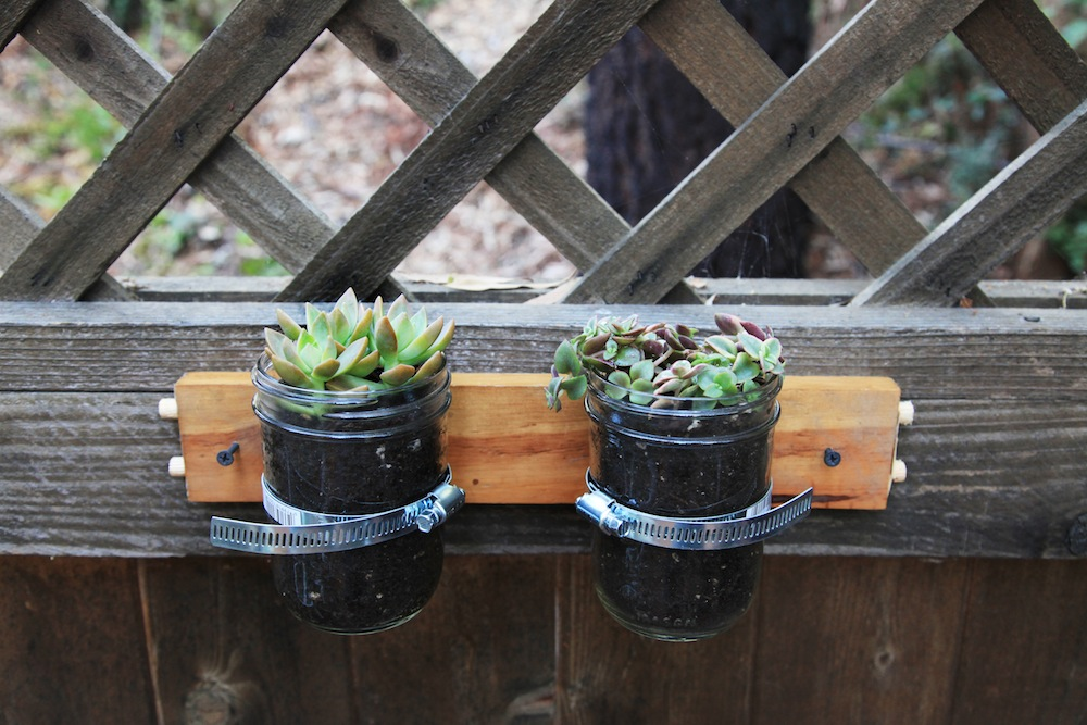 0 Mason Jar Herb Garden. You will be the envy of your green fingered friends when they see these rustic mason jar herb planters on your wall! They will will gaze in wonder at how you did this yourself.