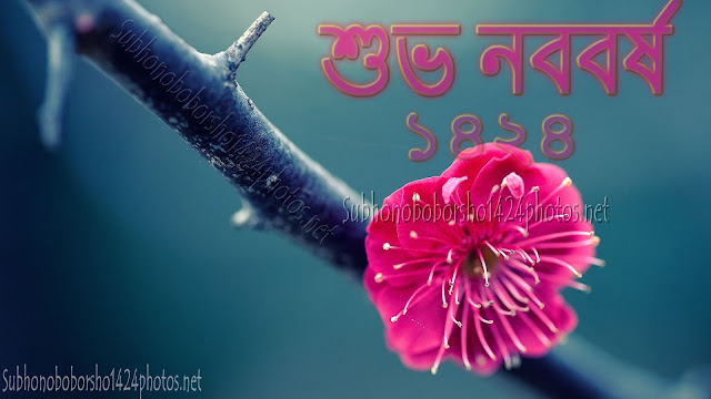 শুভ নববর্ষ ২০১৭ Wallpapers Download For Desktop In HD