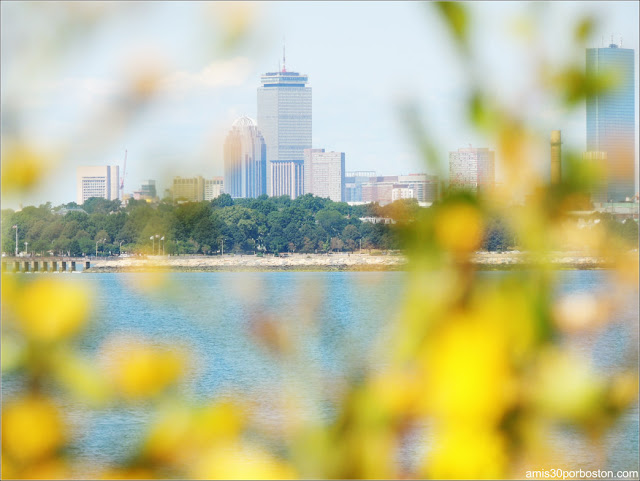Vistas de Boston desde Spectacle Island