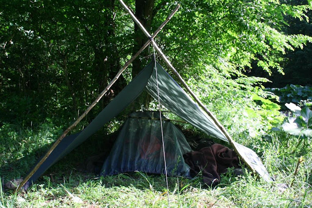 tarp between an A frame and a tree, with a hammock with mosquito net