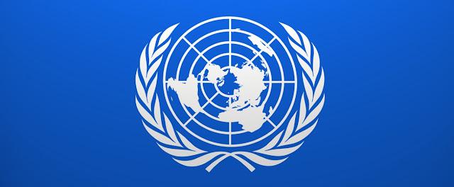 ONU y sociedad internacional