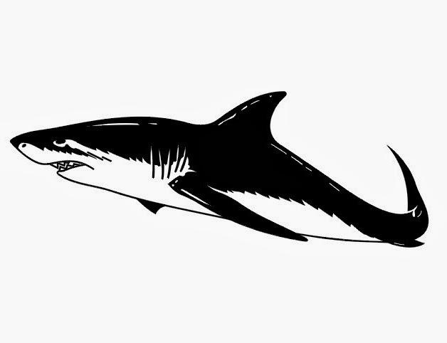 Shark tattoo stencil