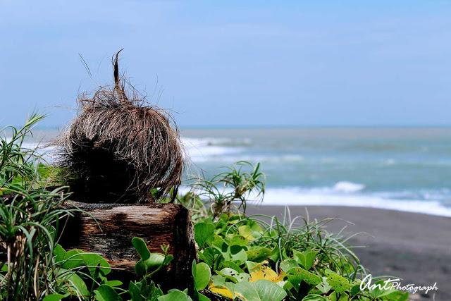 Pantai di Kulon Progo