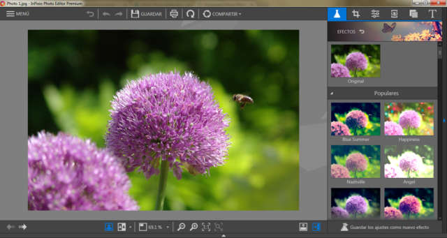 Avanquest InPixio Photo Editor Premium 1.7 Full Español