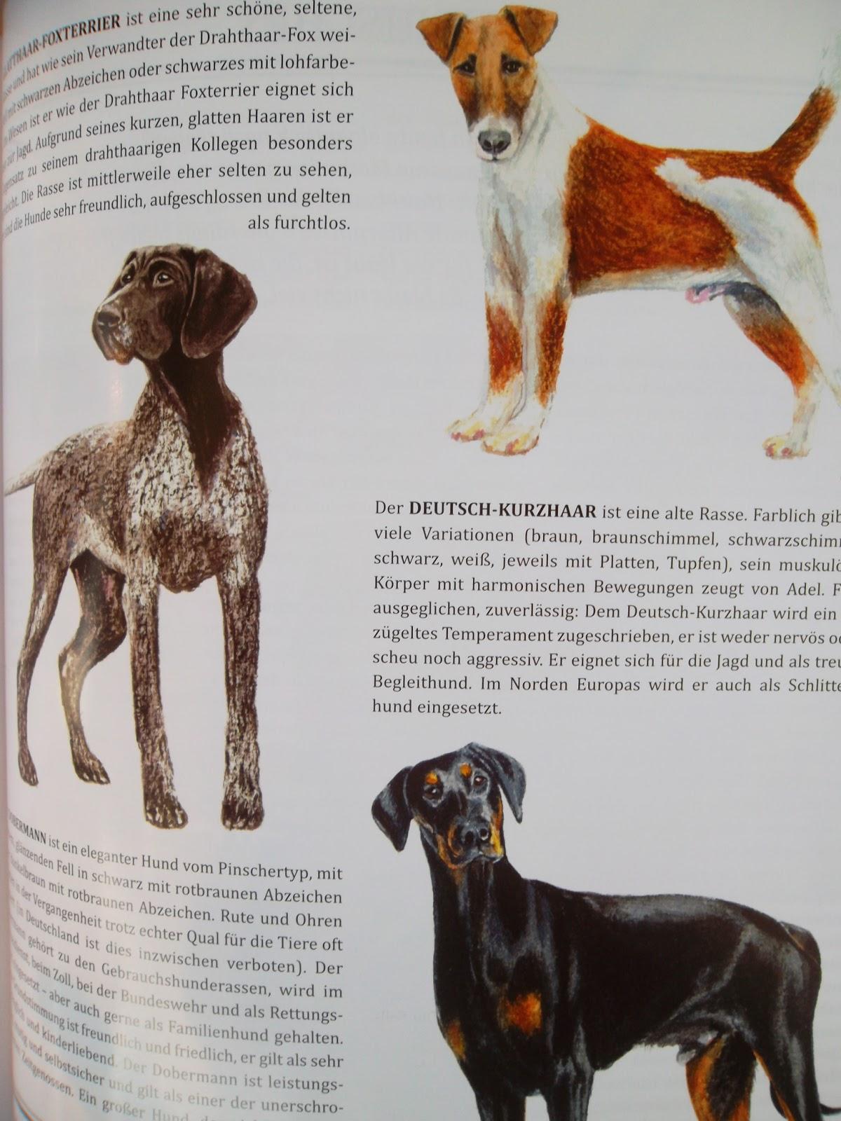Honden. Uit The Heritage Post #4