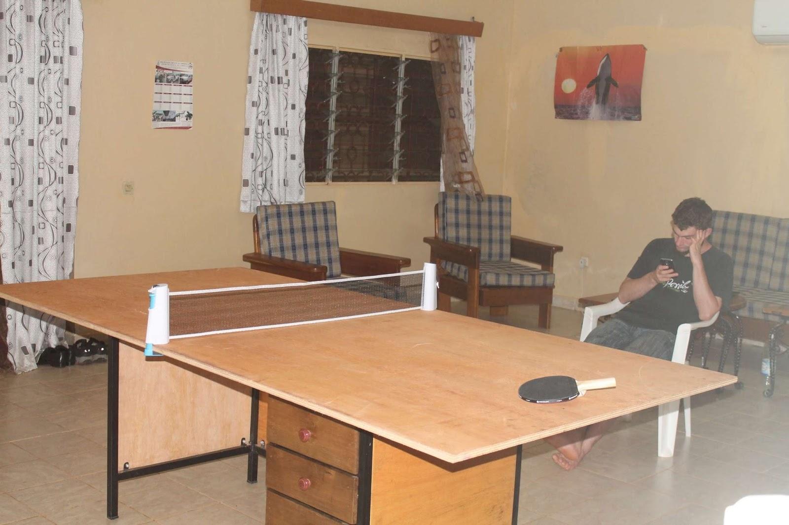 100 Peinture Pour Table De Ping Pong Peinture