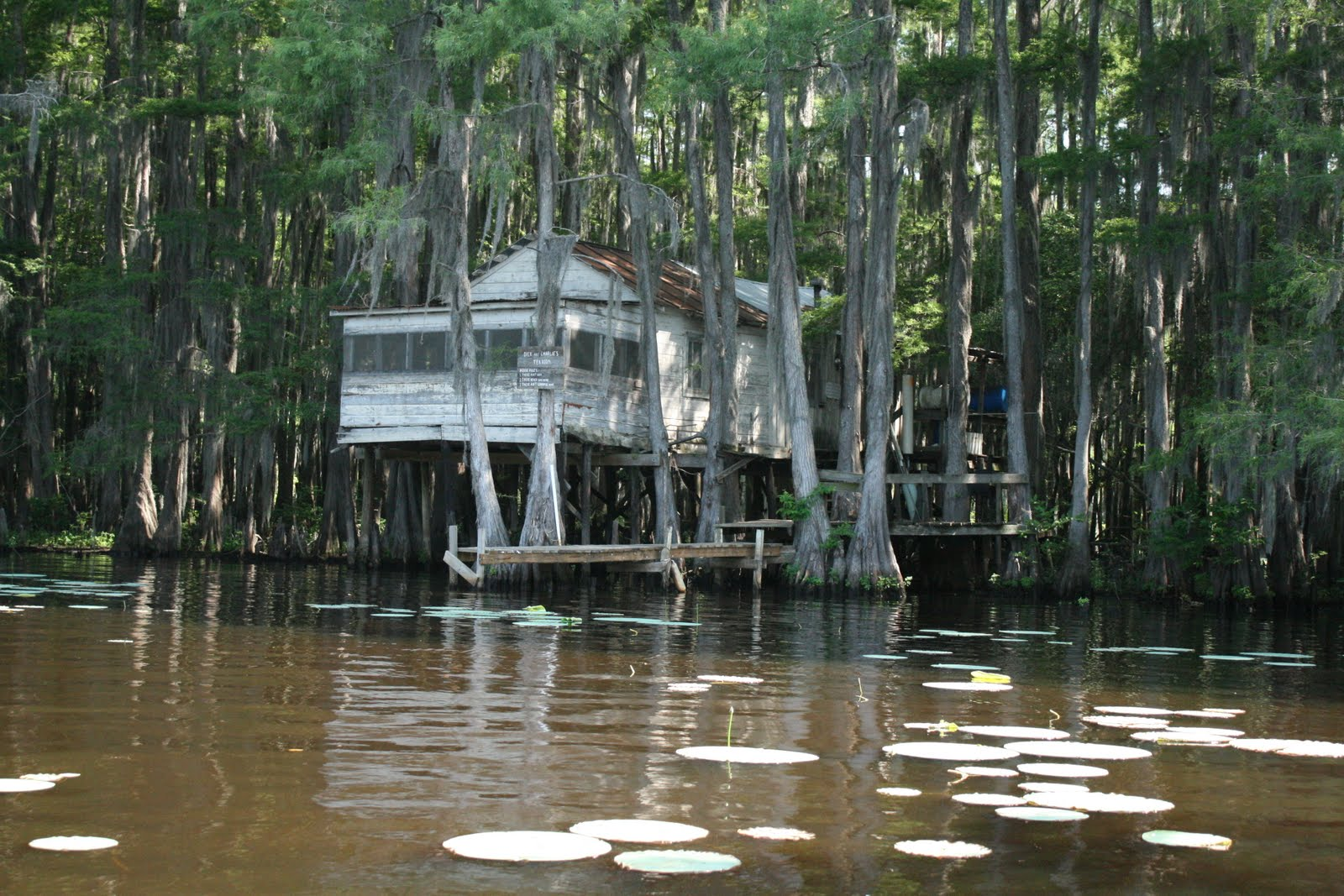 The French Connection: Lake Caddo State Park