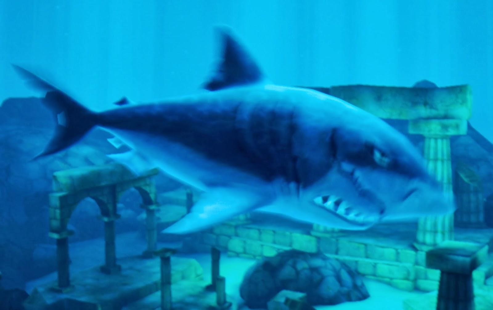 Hungry shark evolution megalodon vs giant crab - photo#35