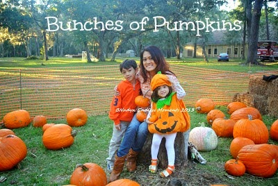 http://b-is4.blogspot.com/2013/10/bunches-of-pumpkins.html