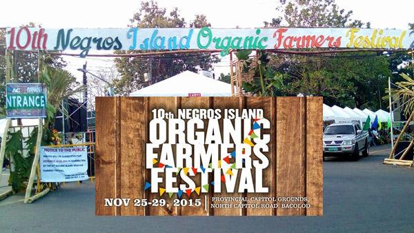 Organic Festival