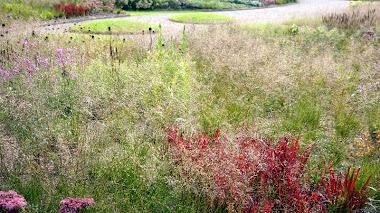 El nuevo jardín de Piet Oudolf en Somerset