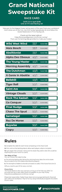 Grand National Sweepstake Kit - Printable Race Cards & Betting Slips - RACE CARD 2