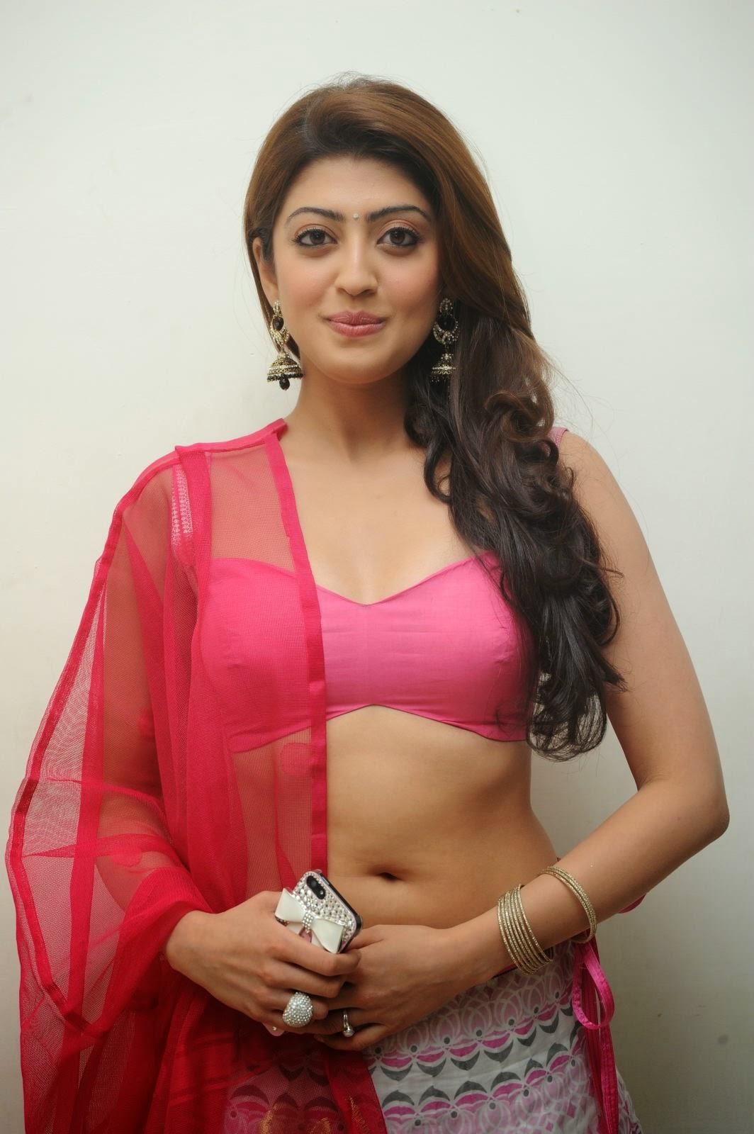 Pranitha Subhash Hot Sexy Navel In Pink Transparent Dress Celebs Hot World Hq No Watermark