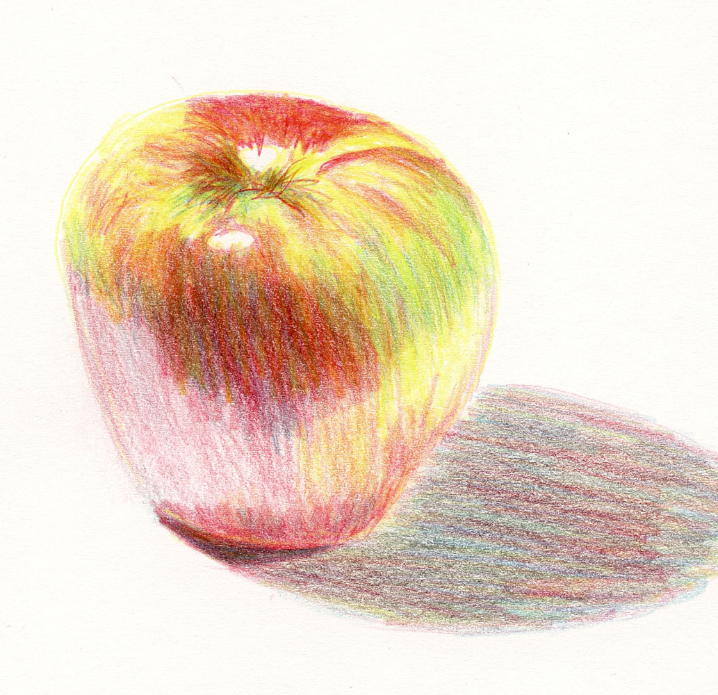 12 11 16 polychromos and pablo colored pencils