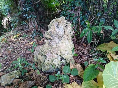 志多伯集落の石獅子の写真
