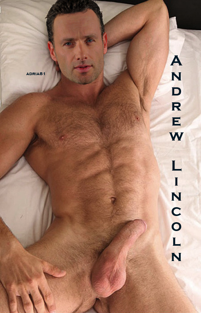 andrew lincoln gay