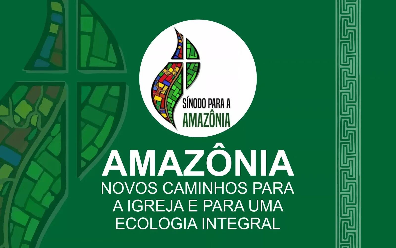 Resultado de imagem para Sínodo especial sobre a Amazónia