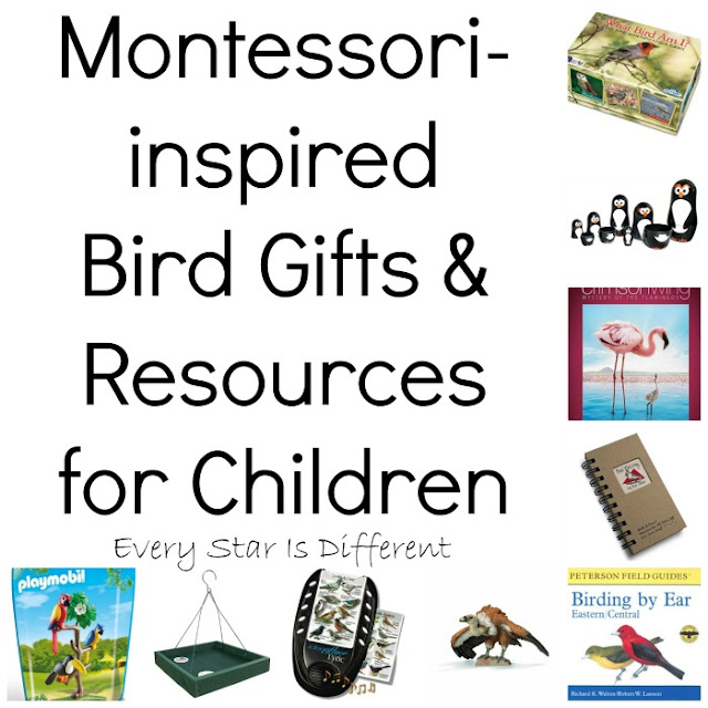 Montessori-inspired Bird Gifts and Resources for Children