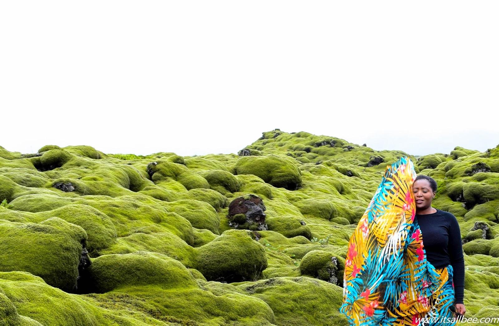 Eldhraun Iceland - Moss Lava Fields