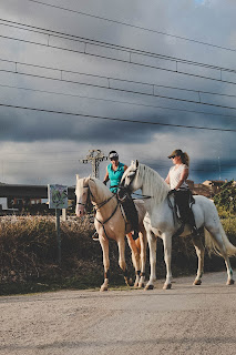A white horse and a palomino horse being ridden on a road