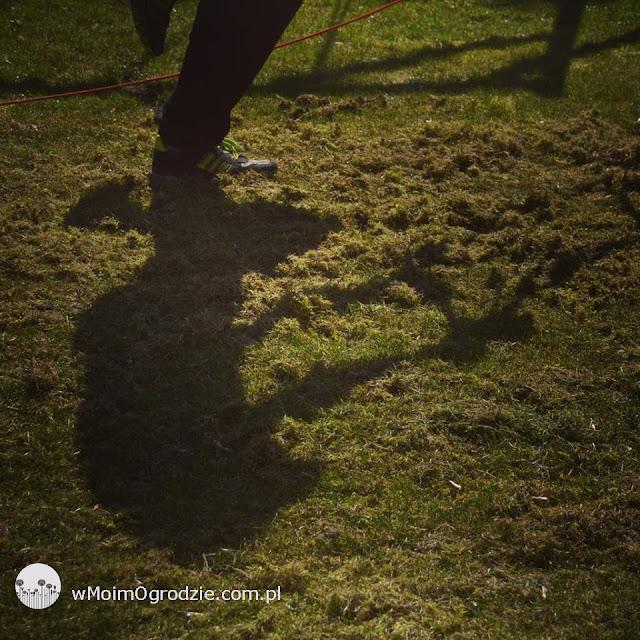 pielegnacja trawnikow grojec tarczyn warka nadarzyn piaseczno
