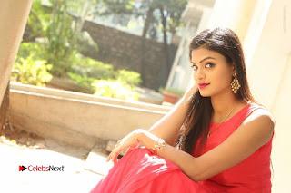Telugu Actress Anusha Stills at Dhyavudaa Movie Teaser Launch  0097.JPG