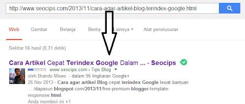 Tips Cara mengatasi Google Sandbox