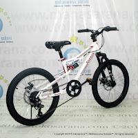 Sepeda Gunung Remaja Reebok Chameleon Spirit Pro 20 Inci