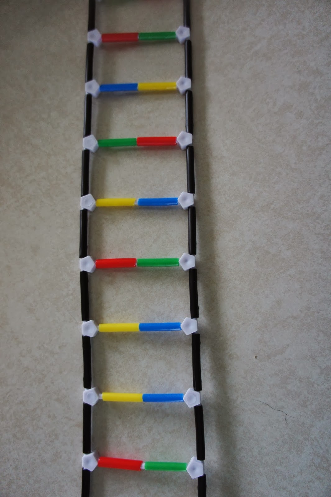 Dna Model Pipe Cleaners - Acpfoto