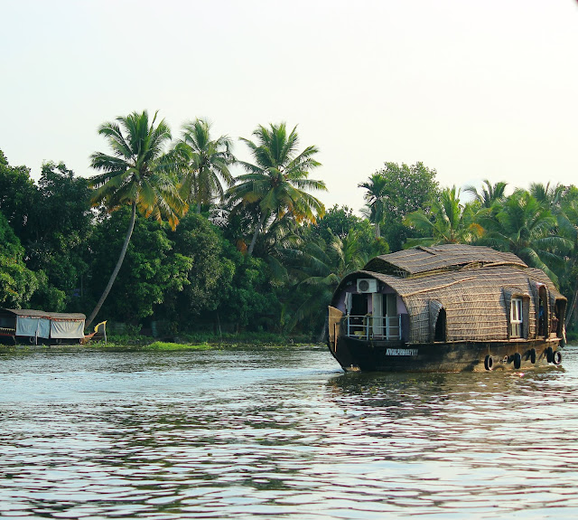 Backwater, Houseboat, Coconut, trees, scenic, Alleppey, kerala