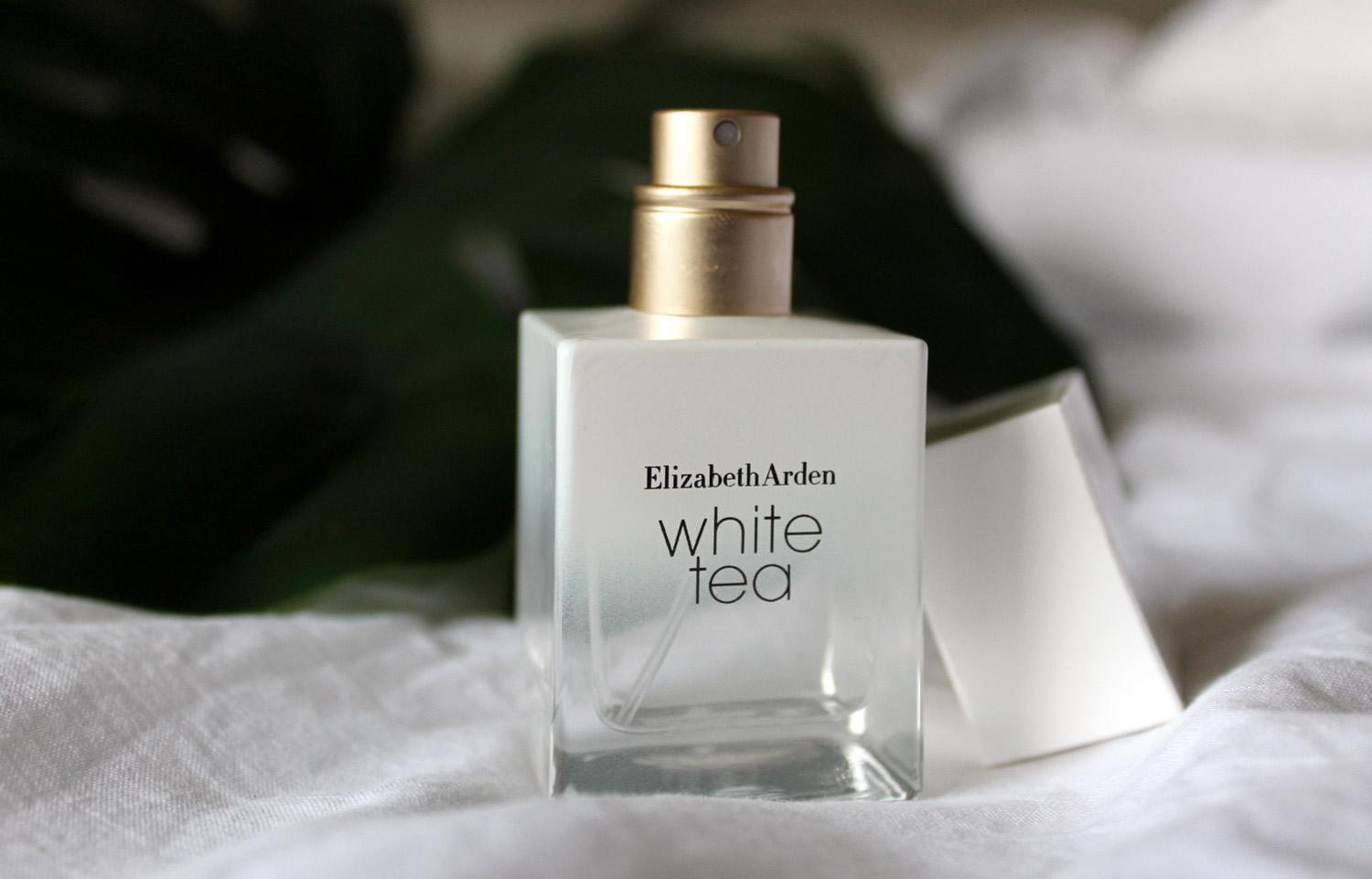 elizabeth arden white tea blogger