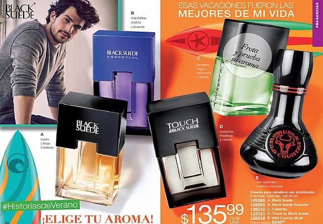 catalogo Avon mexico campaña 12 2016